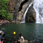 DUDHSAGAR-WATERFALLS-TREK-15-08-2017-1502787512