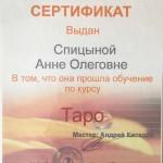 Сертификаты Анны Спицыной