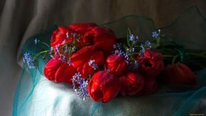 cvety-raznye-vmeste-nezabudki-tyulpany-1032131